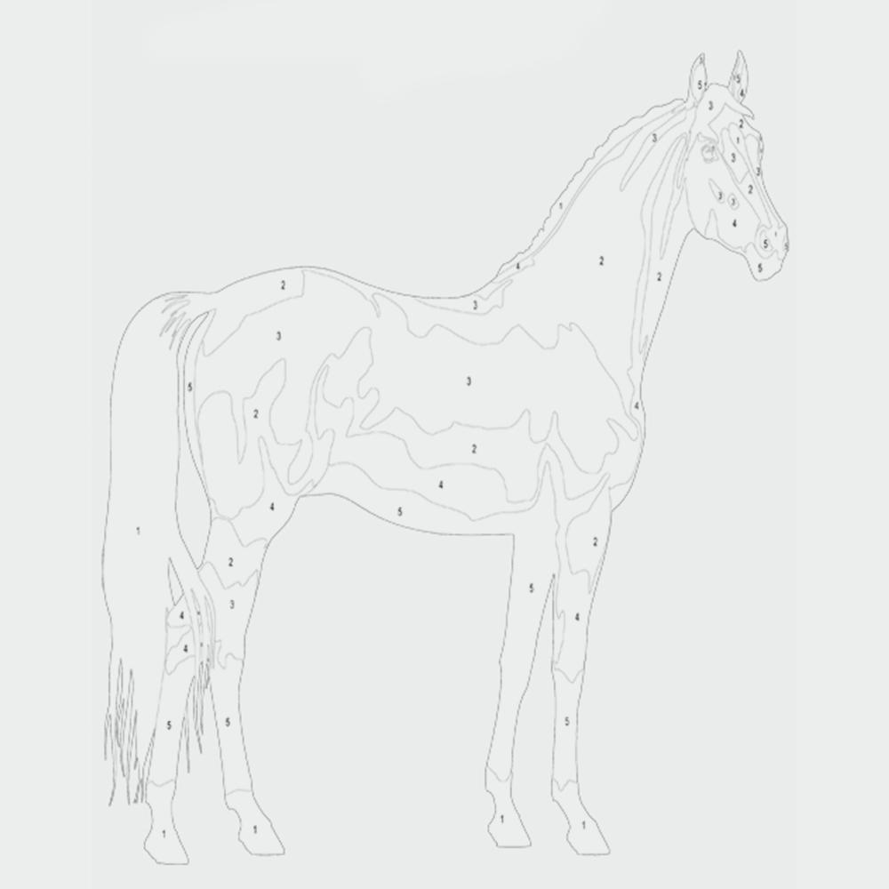 Ausmalbild Pferde - Malen nach Zahlen  kribbelbunte Ausmalbilder