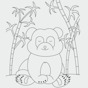 Panda Ausmalbild