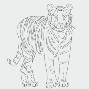 Tiger Ausmalbild